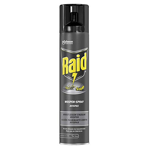 Raid Wespen-Spray 300 ml