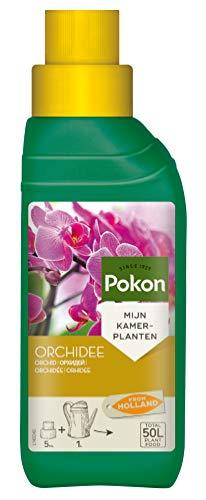 Pokon Orchideen-Flüssigdünger, Flüssige Spezialnahrung für alle...