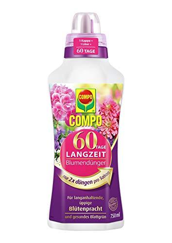 Compo 60 Tage Langzeit Blumendünger für alle Zimmer-, Balkon- und...