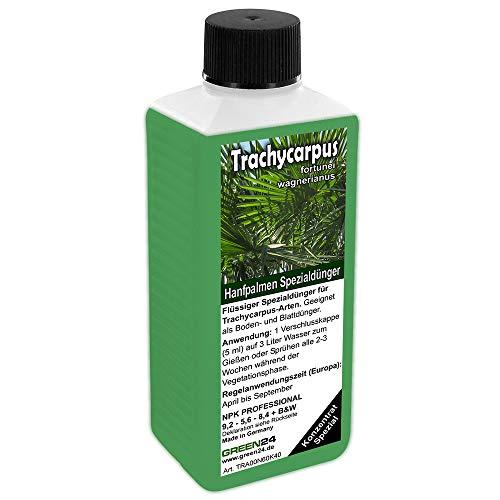 GREEN24 Trachycarpus Dünger für Hanfpalmen Tessinerpalmen Trachycarpus...