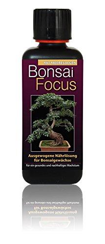 Dünger Bonsai Focus 300ml Flüssigdünger Konzentrat Bonsaidünger...
