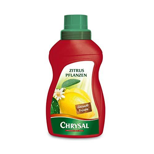 Chrysal Flüssigdünger für Zitruspflanzen - 500 ml