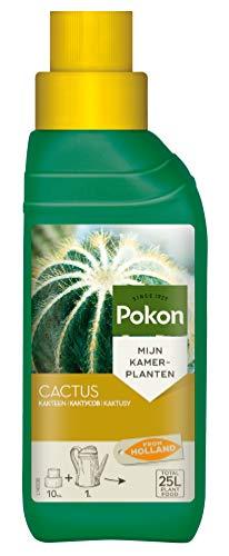 Pokon Kakteen-Flüssigdünger, für alle Kakteen und Sukkulenten, Spezialdünger...