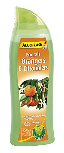 ALGOFLASH ALIAGR750 Zitronendünger, bis zu 100 L, inklusive Dosierkappe, 750 ml