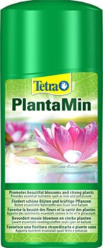 Tetra Pond PlantaMin Wasserpflanzen-Dünger (für ein gesundes üppiges...