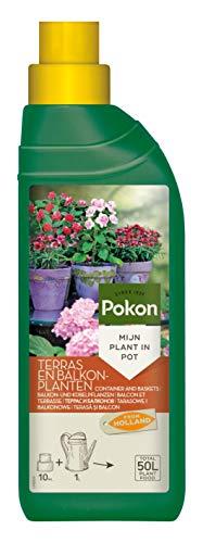 Pokon Balkon- und Kübelpflanzen Flüssigdünger, Qualitäts-Dünger für alle...