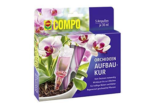 Compo Orchideen-Aufbaukur für alle Orchideen-Arten, 4 Wochen Langzeitwirkung, 5...