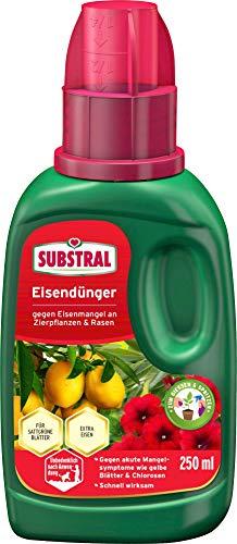 Substral Eisendünger, 250 ml Flasche