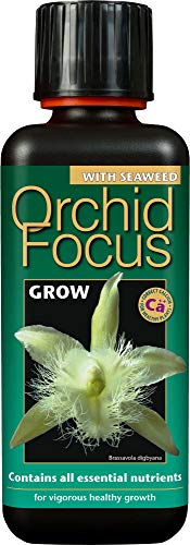 Growth Technology Orchid Fokus Wachsen 300 ml, schwarz, 5.5x5.5x16 cm,...