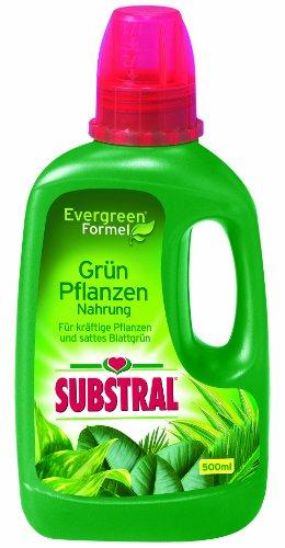 Substral Grün-Pflanzen Nahrung, Spezial-Flüssigdünger mit Eisen-Plus für...