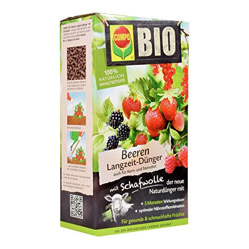 Compo BIO Beeren Langzeit-Dünger für alle Beerenpflanzen, Kern- und Steinobst,...