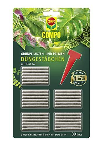 COMPO Grünpflanzen- und Palmen Düngestäbchen mit Guano, 3 Monate...