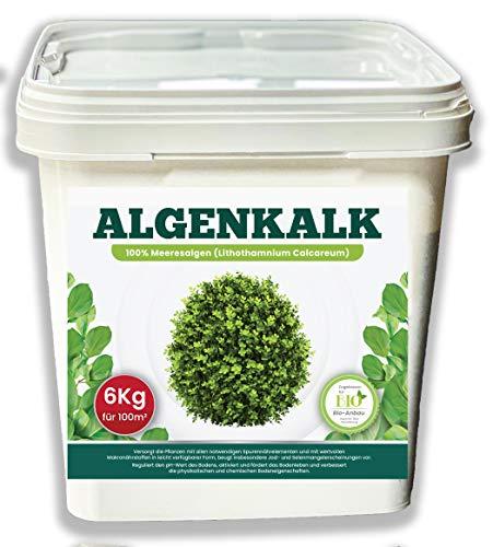 DARO Design Bio Algenkalk 6Kg - Buchsbaum Pulver höchster Qualität -...