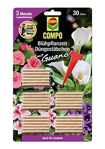 COMPO Blühpflanzen Düngestäbchen mit Guano, 3 Monate Langzeitwirkung, 30...