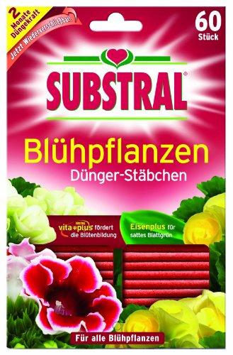 Substral Dünger-Stäbchen für Blühpflanzen mit Eisen-Plus und 2 Monate...