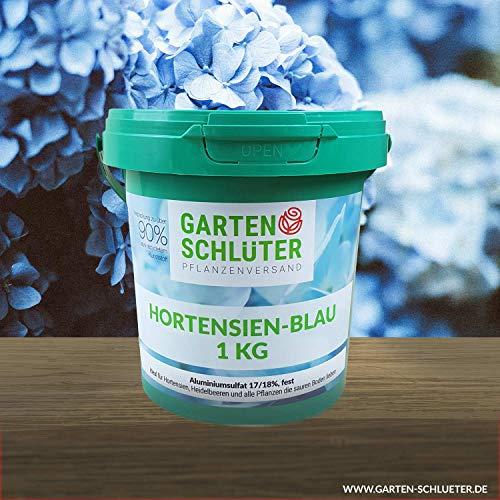 Schlüter´s Hortensien-Blau - 17/18% Aluminiumsulfat, fest - Blaue Hortensien...