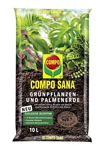 COMPO SANA Grünpflanzen- und Palmenerde mit 12 Wochen Dünger für alle Zimmer-...