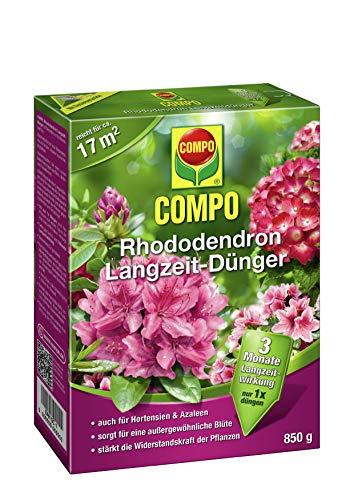 COMPO Rhododendron Langzeit-Dünger für alle Arten von Morbeetpflanzen, 3...