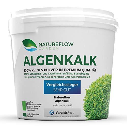 TESTSIEGER Algenkalk Pulver für Buchsbaum – Widerstandskraft und Regeneration...