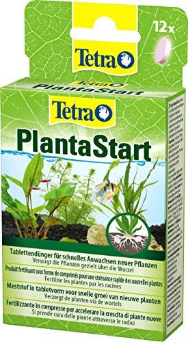 Tetra PlantaStart Düngetabletten - für prächtige Wasserpflanzen im Aquarium,...