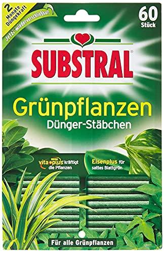 Substral Dünger-Stäbchen für Grünpflanzen mit Eisen-Plus und 2 Monate...