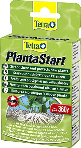 Tetra PlantaStart Düngetabletten (für prächtige Wasserpflanzen im Aquarium,...