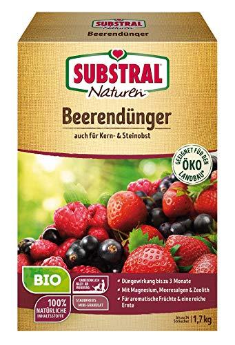 Substral Naturen Bio Beerendünger, für Beerenobst, Kern und Steinobst, 3...