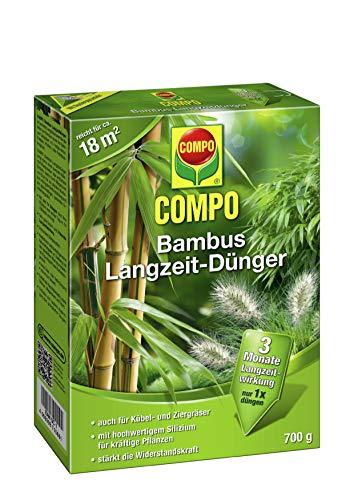COMPO Bambus Langzeit-Dünger für alle Bambusarten, Zier- und Kübelgräser, 3...
