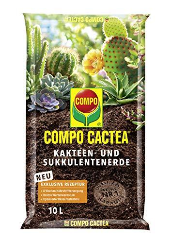 COMPO CACTEA Kakteen- und Sukkulentenerde mit 8 Wochen Dünger für alle...