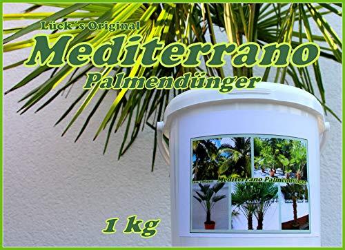 Freilandpalmendünger, Palmendünger, Hanfpalmendünger 1Kg Original Mediterrano