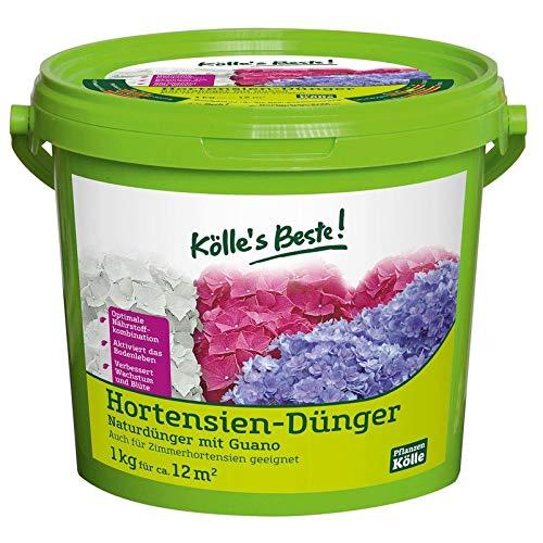 Kölle's Beste! Hortensiendünger für prächtig blühende Hortensien,...