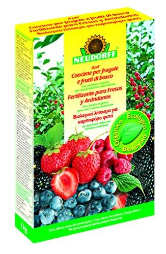 BIO Neudorff Spezialdünger Erdbeeren / Blaubeere / Brombeere 100% (1kg)