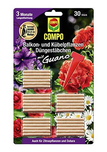 COMPO Balkon- und Kübelpflanzen Düngestäbchen mit Guano, 3 Monate...