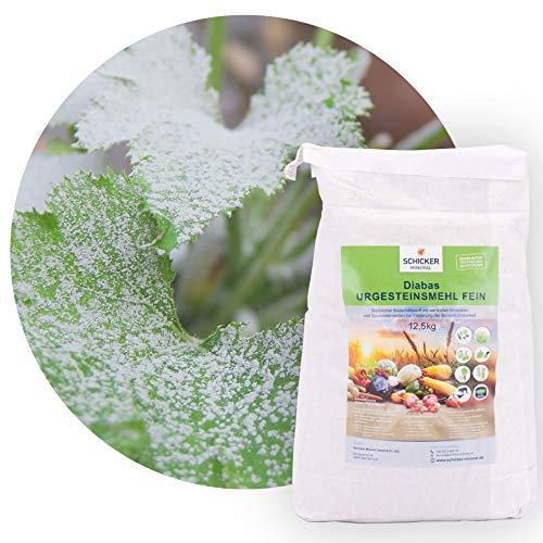 Schicker Mineral feines Diabas Urgesteinsmehl 12,5 kg, reines Gesteinsmehl für...