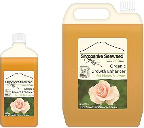 Organischer Dünger aus Atlantischen Algen hergestellt - 1 Liter - Andere...