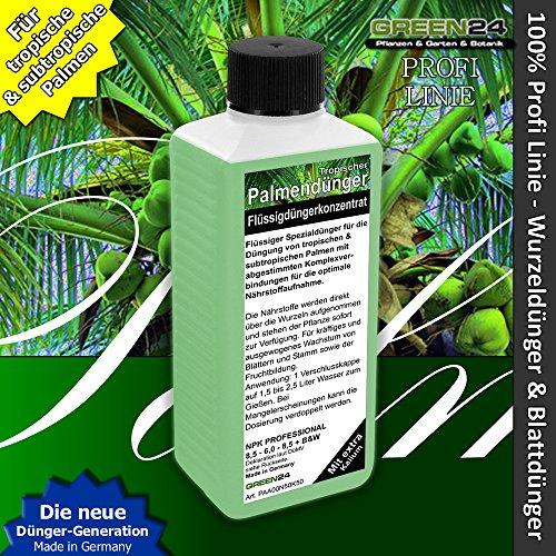 GREEN24 Palmendünger Profi Linie Dünger für Palmen Wurzeldünger +...