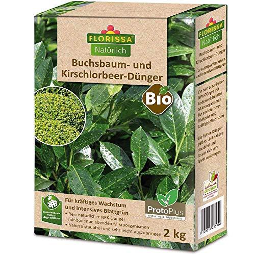 Florissa Natürlich 58595 Buchsbaum, Kirschlorbeer und immergrüne Pflanzen...